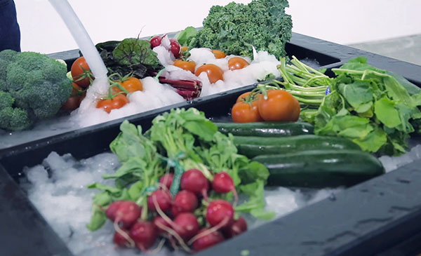 nanoIce_Vegetables_600x365